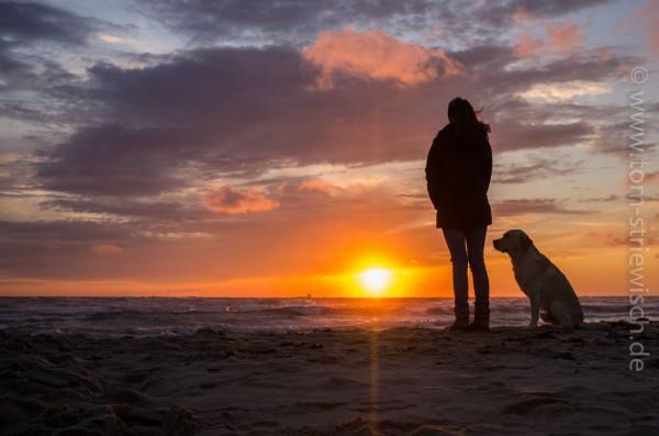"""Illustration zu: """"Ein Sonnenuntergang, hier mit Mensch und Hund, ist ein beliebtes Motiv für Urlaubsfotos."""""""