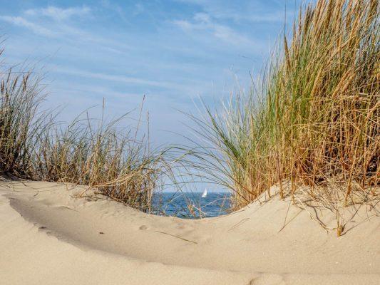 Aus den Tipps für bessere Urlaubsfotos: Urlaubsmotiv - Dünen