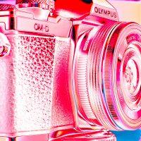 Eine MFT-Kamera von Olympus. Die O-EM10II