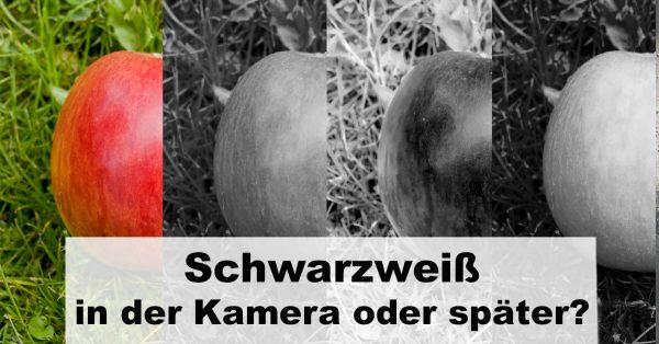 """Illustration zum Beitrag: """"Schwarzweiß-Digitalfotografie – Umwandlung in der Kamera oder später?"""""""