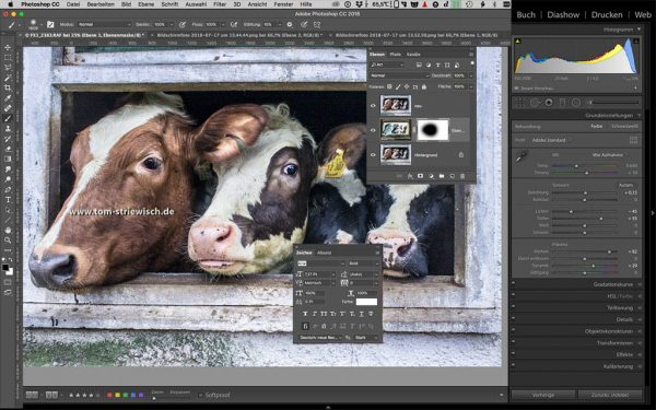"Illustration zum Fotokurs ""Photoshop für Lightroomer"""