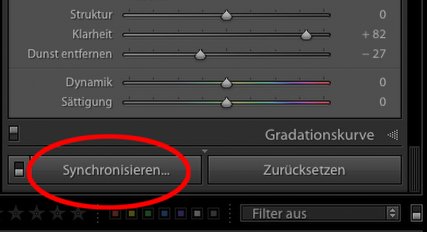 "Illustartion zu ""Lightroom Einstellungen synchronisieren"""